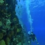 Bávaro Splash en Punta Cana